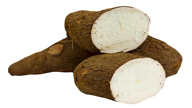 tanzania-cassava