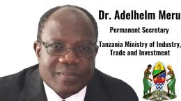 Adelhelm Meru permanent secretary Tanzania ministry industry trade investment